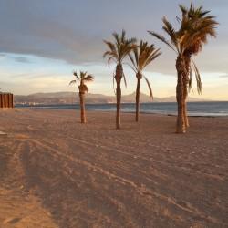 Entrenamiento Personal Alicante